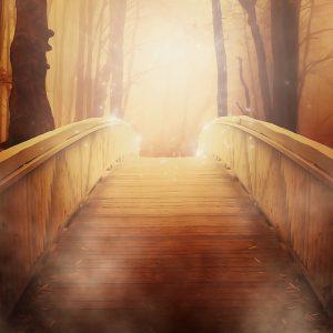 Saison de la lumière